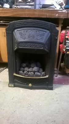 gas fire manufacturers instructions